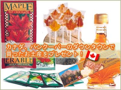 ネットビジネスブログ by 清水 からのカナダ土産プレゼント