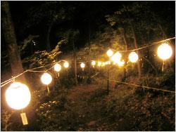 夜の山に輝く提灯ロード。
